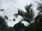 Chuva intensa continua na região norte de MS na quarta-feira, diz Inmet