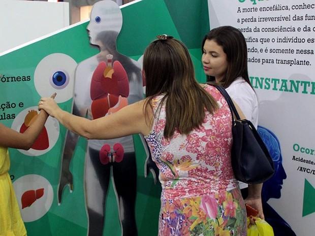 Exposição abordará doação de órgãos e já passou por  (Foto: Divulgação/ Gestode Amor)