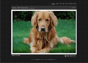 Flogr, galeria de imagens para Flickr