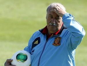 Vicente del Bosque no treino da Espanha (Foto: EFE)