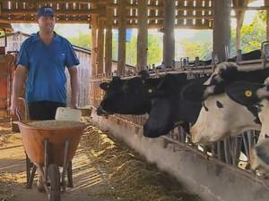 ração milho (Foto: Reprodução/RBS TV)