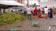 'Feira do Milho' tem movimento intenso na véspera de São João