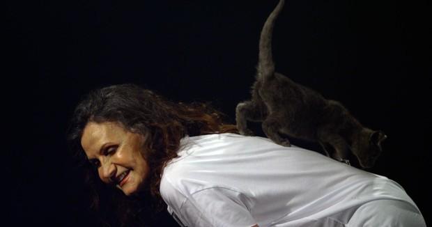 Rosamaria Murtinho (Foto: Ricardo Pate/Grupo Estimação/Divulgação)