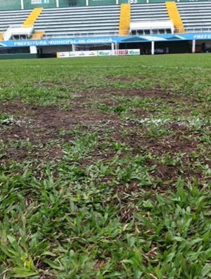 Gramado da Arena Índio Condá tem péssimo gramado (Foto: GLOBOESPORTE.COM)