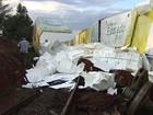 Vagões que descarrilaram em Cosmorama, SP, são retirados