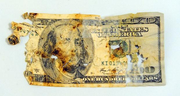Americano recolheu pedaços de cédulas em fezes para tentar reembolso (Foto: Eliza Wiley/The Independent Record/AP)