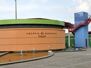 Aquário Municipal de Cuiabá (Foto: Arquivo TVCA)