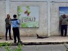 Filhote de jacaré é resgatado em rua de Manaus
