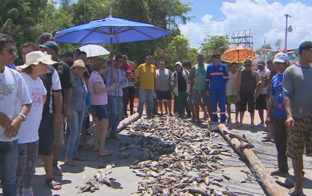 Alta mortandade de peixes causa protestos em Ferreira Gomes, no Amapá. (Foto: Reprodução/TV Amapá)