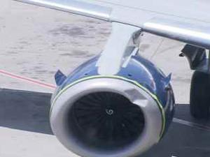 Ave se choca contra turbina de avião da Azul, no Recife (Foto: Reprodução / TV Globo)