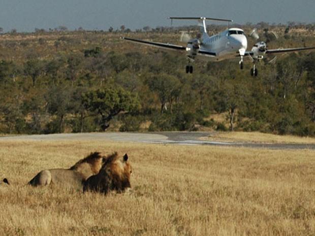 Aeroporto Phinda Airstrip, eleito um dos que oferecem os pousos mais belos do mundo (Foto: Divulgação/PrivateFly)