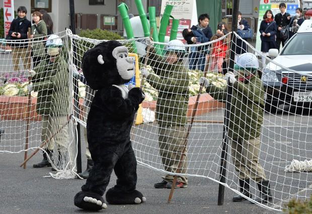 Funcionário tentam deter homem vestido de 'gorila fujão' com redes durante treinamento do zoológico de Ueno, no Japão (Foto: Kazuhiro Nogi/AFP)