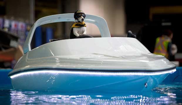 Duma também 'pilota' um barco, também controlado remotamente pelo dono (Foto: AP)