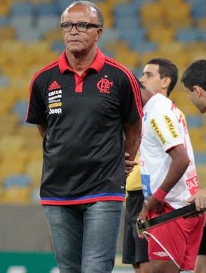 Jayme de Almeida (Foto: Gilvan de Souza / Flamengo)