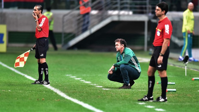 Cuca Palmeiras x Figueirense (Foto: Marcos Ribolli)