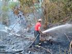 Plano de combate às queimadas é lançado em cidades do Amazonas