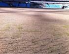 Surge a grama da Arena pela primeira vez (Eduardo Antonini / Grêmio, DVG)
