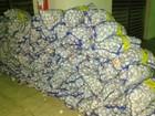 Polícia em RR apreende 1 tonelada de alho contrabandeado da Guiana