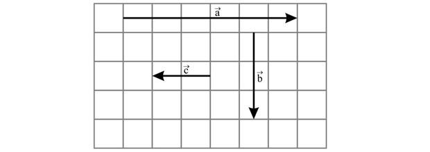 Gráfico vetor (Foto: Reprodução)