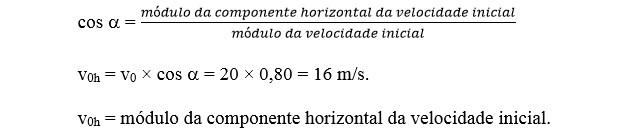 Cálculo - lançamento obliquo (Foto: Reprodução)