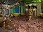 Rivais da Primavera relembra ciclo do ouro no carnaval de Juiz de Fora
