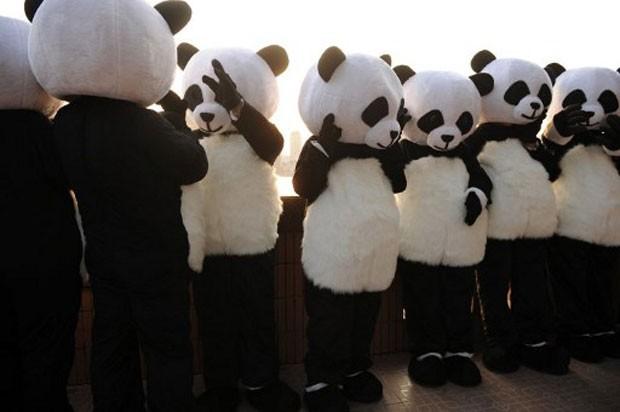 Participantes de campanha se vestiram de urso panda em Xangai, na China, neste sábado (Foto: Peter Parks/AFP)