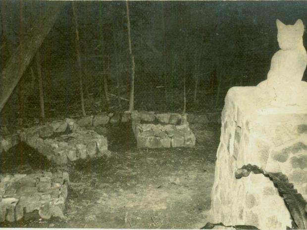 Edith fazia 'ritualística' para enterro de seus gatos, nos fundos da residência (Foto: Arquivo Histórico/FCBlu)