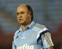 Palmeiras busca o time ideal