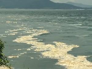 Espuma permanece há seis meses no litoral da Costa Verde (Foto: Reprodução/TV Rio Sul)