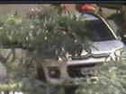 Imagens mostram turistas sendo assaltados em Guarujá, SP
