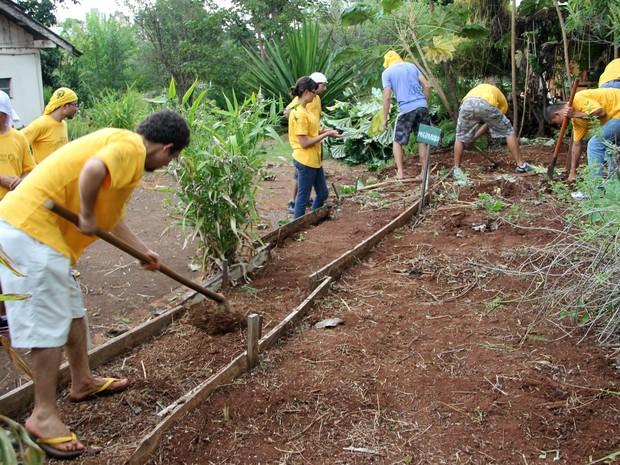 Estudante limparam horta onde é plantada verduras e legumes (Foto: Fabio Rodrigues/G1)