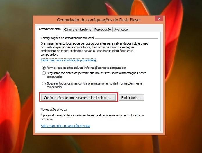 Descubra quais sites já tiveram acesso a suas informações (Reprodução/Taysa Coelho)