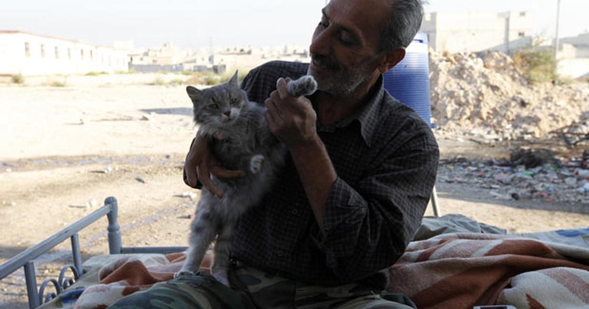 Contra fome, religiosos sírios liberam comer gatos, cachorros e burros