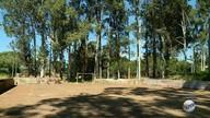 Moradores reclamam de mato alto no bairro Parque das Andorinhas em Ribeirão