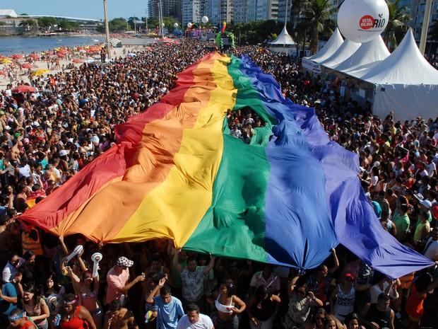 O tradicional bandeirão com as cores do arco-íris não resistiu à animação do público, que abriu um buraco no adereço (Foto: Alexandre Durão/G1)