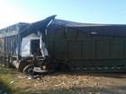 Motorista morre em acidente entre caminhões em Novo Horizonte