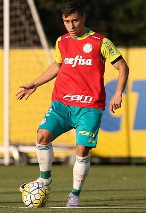 João Pedro Palmeiras (Foto: Cesar Greco/Ag Palmeiras)