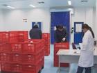 Começa a funcionar a fábrica da Hemobrás em Goiana, PE