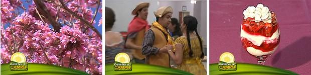 Caminhos do Campo - Flores no inverno, receita de tacinha de Morango e grupo de dança (Foto: Reprodução/RPC TV)