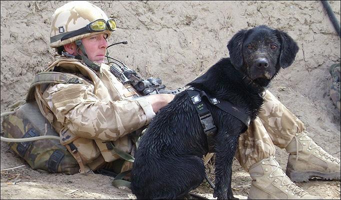Os dois amigos em ação no Afeganistão