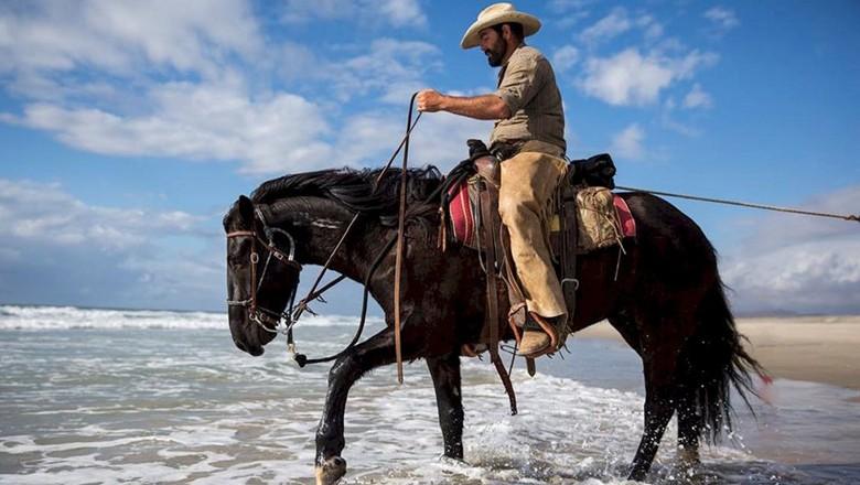 cauboi-cavalo-mar (Foto: Pexels)