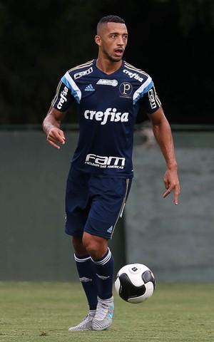 Vitor Hugo Palmeiras (Foto: Cesar Greco / Ag. Palmeiras / Divulgação)