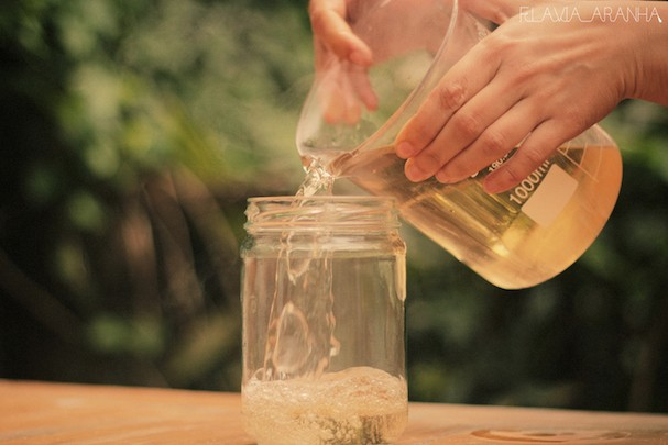 Aprenda a fazem em casa uma receita de detergente natural (Foto: Divulgação)