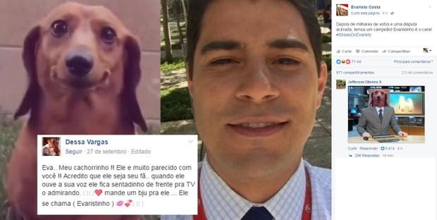 Cachorrinho ganha concurso de sósias de Evaristo Costa (Foto: Reprodução/Facebook)
