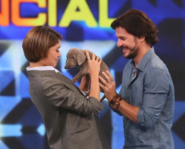 Sophie Charlotte ganha um cachorrinho do namorado (Foto: Isabella Pinheiro / Gshow)