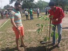 No AP, estudantes plantam 30 mudas de árvores durante trote ecológico