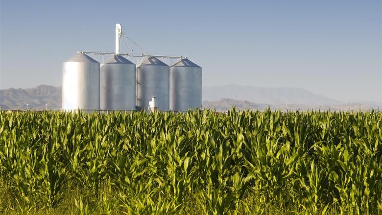 silo-armazenagem-milho-grao-armazem (Foto: Divulgação/Centro Europeu)