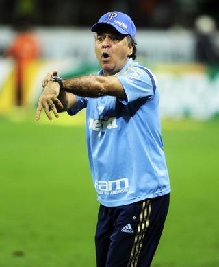 Palmeiras x Fluminense Marcelo Oliveira (Foto: Marcos Ribolli)