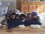 Dentinho posa com a mulher, Dani Souza, e os filhos