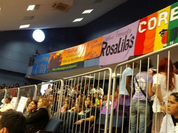 Audiência na Câmara Municipal de Campinas (SP), 1º de junho de 2015 (Foto: Carlos Alciati/ G1)